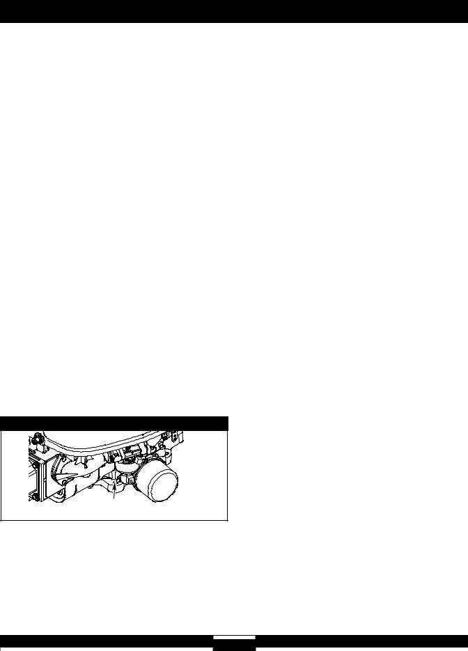 253700 252700 Briggs /& Stratton Cjto de reparación para carburador peso de 42 G